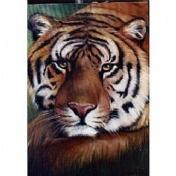 Bob Ross How-To Painting Packet Wildlife Tiger